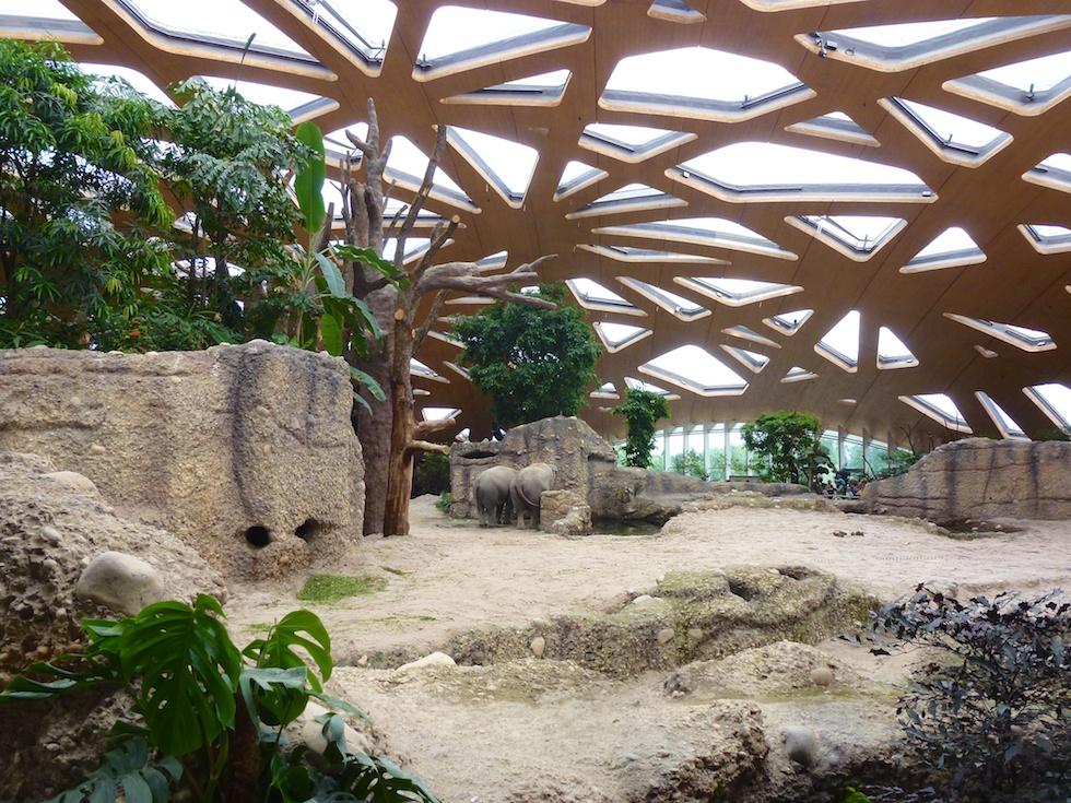 Ein Blick ins Innere der neuen Elefantenanlage im Zoo Zürich