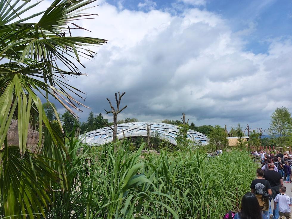 Hier versteckt sie sich: Die Kaeng Krachan Elefantenanlage im Zoo Zürich