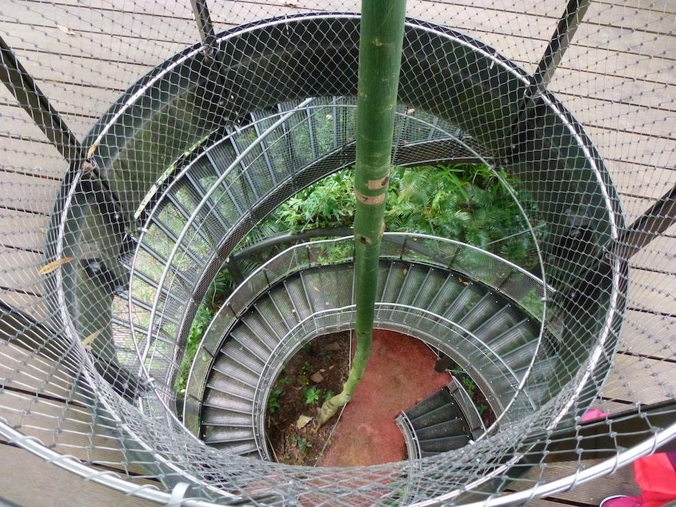 Aufgang zum Baumkronenweg, der einen Blick über die 12'000 Quadratmeter grosse Masoala-Halle erlaubt