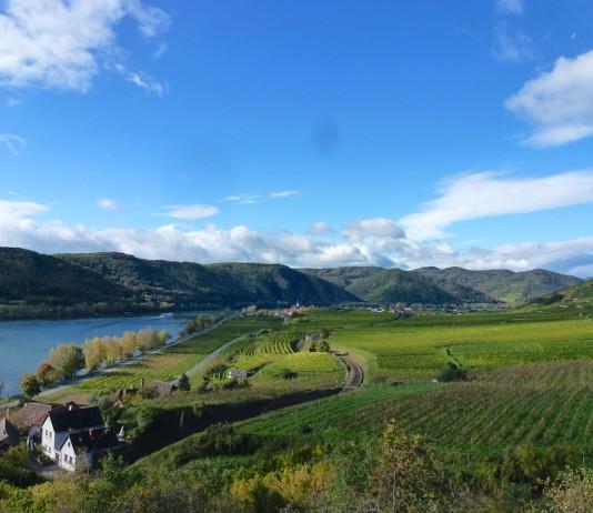 Blick über die Wachau-Region