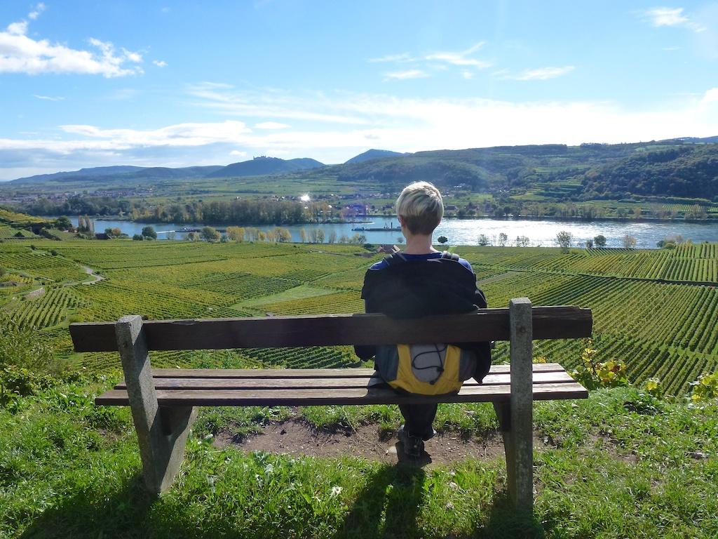 Kurze Pause: Auf Wanderschaft in der Wachau